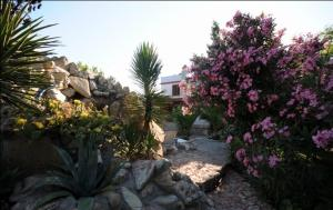 Kemerbag 29 Guest House, Bed & Breakfasts  Bozcaada - big - 36