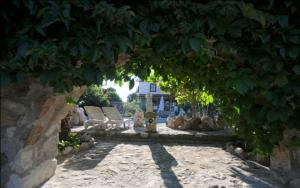 Kemerbag 29 Guest House, Bed & Breakfasts  Bozcaada - big - 28