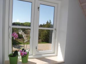 Holiday home Ivigtut, Case vacanze  Bolilmark - big - 18