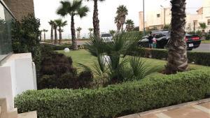 Peninsula, Apartments  Casablanca - big - 5
