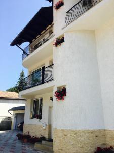 Pension Carina, Guest houses  Bran - big - 31