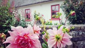 Rose Cottage, Дома для отпуска  Дулин - big - 19