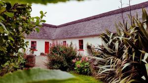 Rose Cottage, Дома для отпуска  Дулин - big - 18