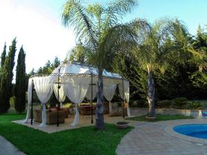 Villa Azolata B&B, Bed and Breakfasts  Partinico - big - 50