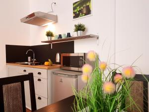 Top Spot Residence, Апартаменты  Краков - big - 49