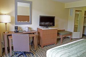 Double Room with Two Double Beds - Pool View
