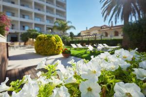 Hotel & Spa Terraza (14 of 40)