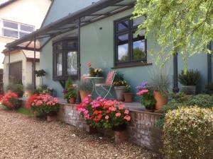 Weston Cottage, Bed & Breakfast  Poole - big - 1