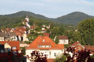 Hotel Stadt Gernsbach, Szállodák  Gernsbach - big - 20