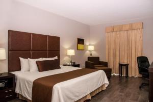 Best Western PLUS Monterrey Airport, Hotels  Monterrey - big - 11