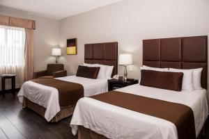 Best Western PLUS Monterrey Airport, Hotels  Monterrey - big - 3