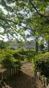 RnB Town Pension, Дома для отпуска  Согвипхо - big - 19