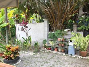 Tamu Nor Homestay Kuantan, Homestays  Kuantan - big - 16