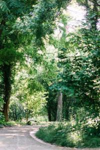 Maison BOGArT, Penziony  Alsobogát - big - 50