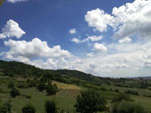 Azienda Agricola Garoglio Davide