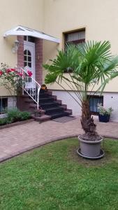 Villa Martha, Penziony  Ruhla - big - 30