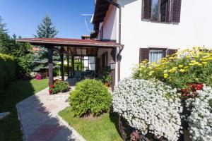 Vila Aleksandra, Apartments  Zlatibor - big - 43