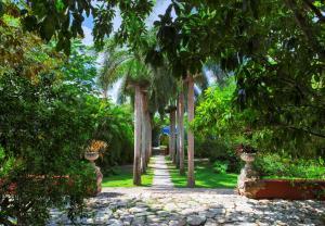Hacienda San José (17 of 83)
