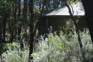 Twin Falls Bush Cottages
