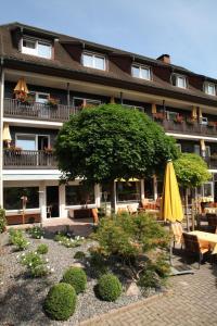 Ringhotel Goldener Knopf, Отели  Бад-Зекинген - big - 6