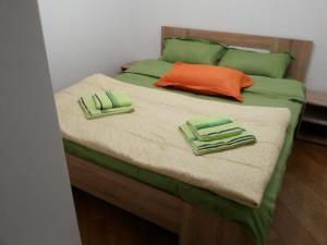 Apartment Jana, Appartamenti  Zlatibor - big - 24