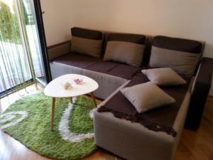 Apartment Jana, Апартаменты  Златибор - big - 10