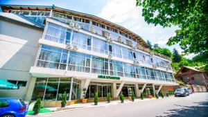 Hotel Borjomi Aisi