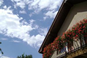 Pension Miorita, Guest houses  Arad - big - 14