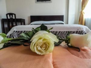 Hostal La Rosa Otavalo, Hostels  Otavalo - big - 8