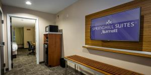 SpringHill Suites by Marriott Denton, Szállodák  Denton - big - 3