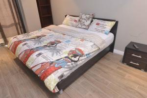 PLS Apartments - Cantonments, Appartamenti  Accra - big - 61