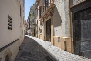 Palace house - Old City -, Apartmány  Seville - big - 2