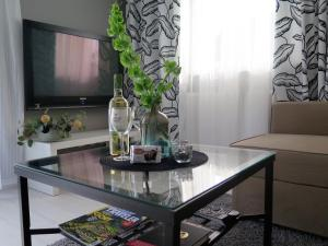 Apartament na Winnicy, Apartments  Toruń - big - 20