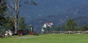 King's and Lake's House Golf Course Royal Bled, Hotels  Lesce - big - 28