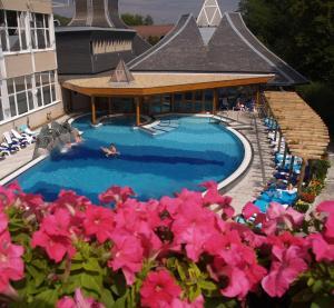 Danubius Health Spa Resort Hévíz, Rezorty  Hévíz - big - 1