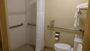 Queen Room - Diability Access/Roll-In Shower