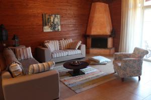 Villa Rustica, Apartmánové hotely  Konitsa - big - 4