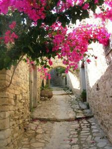 Cyprus Dream Holiday, Apartmány  Voroklini - big - 31