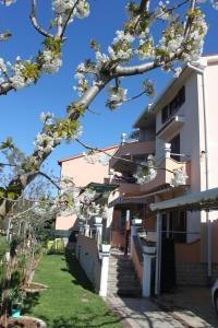 House Milan, Apartments  Fažana - big - 8