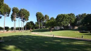 Tenuta Monacelle, Resort  Selva di Fasano - big - 31