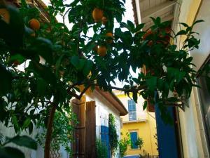 Cyprus Dream Holiday, Apartmány  Voroklini - big - 12
