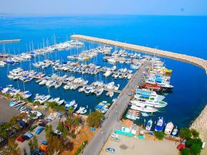 Cyprus Dream Holiday, Apartmány  Voroklini - big - 4
