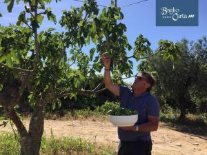 Azienda Agrituristica Baglio Carta, Farmy  Balestrate - big - 55