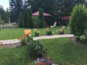 Omiljeni Apartments, Appartamenti  Zlatibor - big - 20