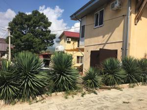 Guest House U Katyushi, Guest houses  Dzhubga - big - 1