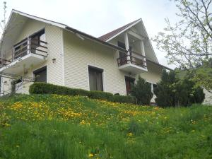 Casa Irina, Ville  Piatra Neamţ - big - 35