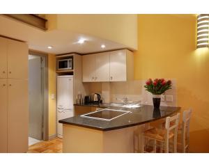 One-Bedroom Apartment - Loft -  Alexander's 904