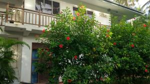 Unawatuna Apartments, Apartmanok  Unawatuna - big - 130