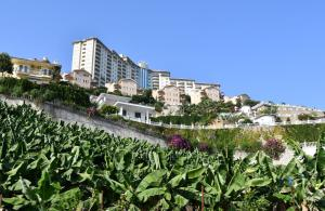 Apartments in Goldcity Tourist Complex