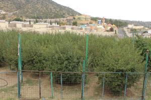 Mountain Village Villa, Vily  Al Shafa - big - 64